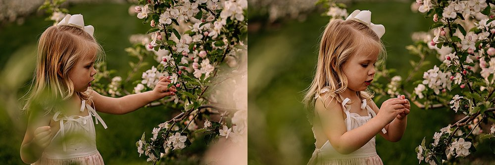 lauren-grayson-photography-akron-ohio-family-photographer-spring-session-apple-orchard_0007.jpg