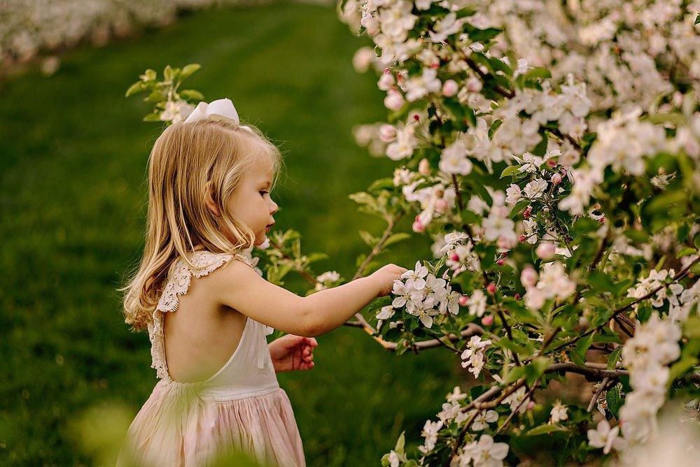 lauren-grayson-photography-akron-ohio-family-photographer-spring-session-apple-orchard_0006.jpg