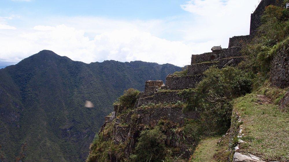 Half way to the top ( Huayna Picchu, Peru )