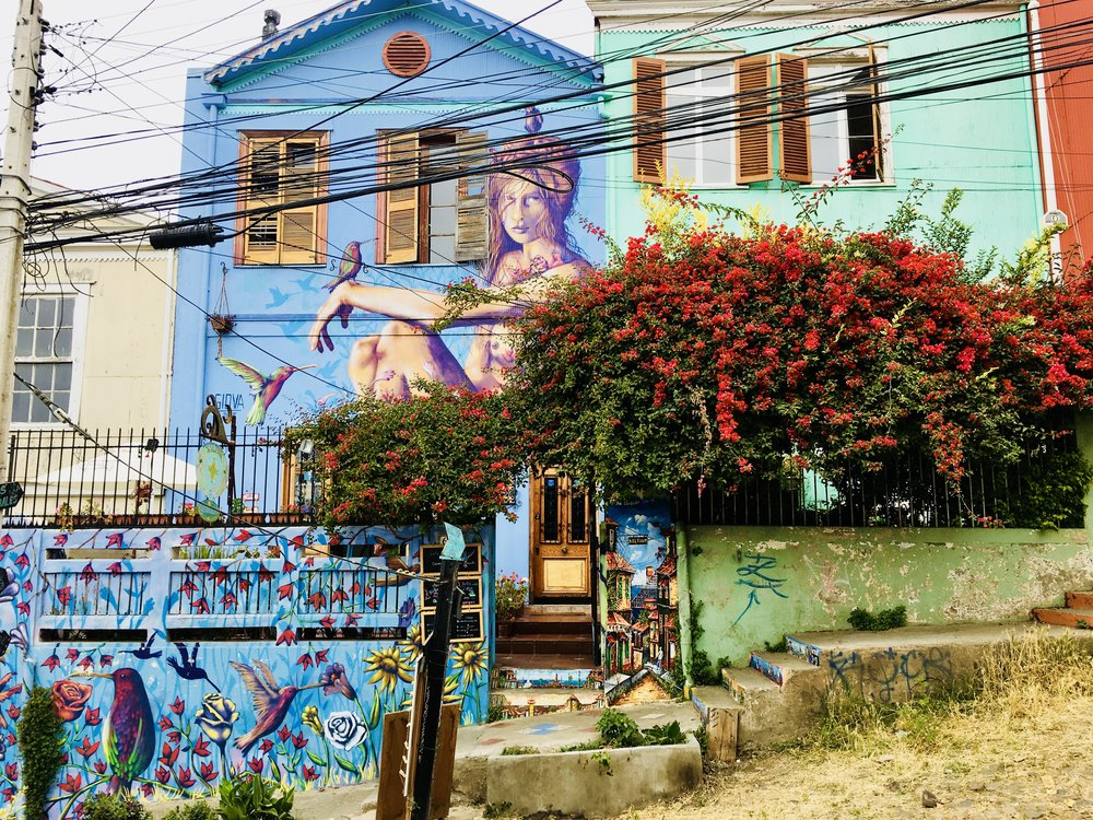 The whole city's a gallery ( Valparaiso, Chile )