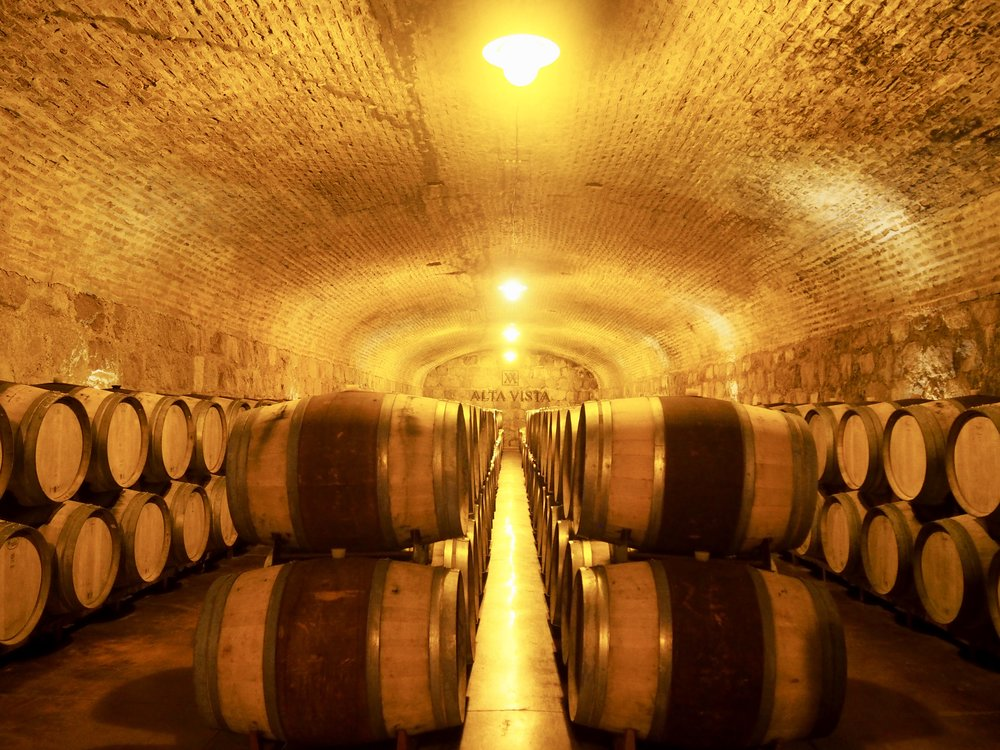 Bodega Alta Vistas got a underground cellar that's 110 years old ( Maipu, Mendoza, Argentina )