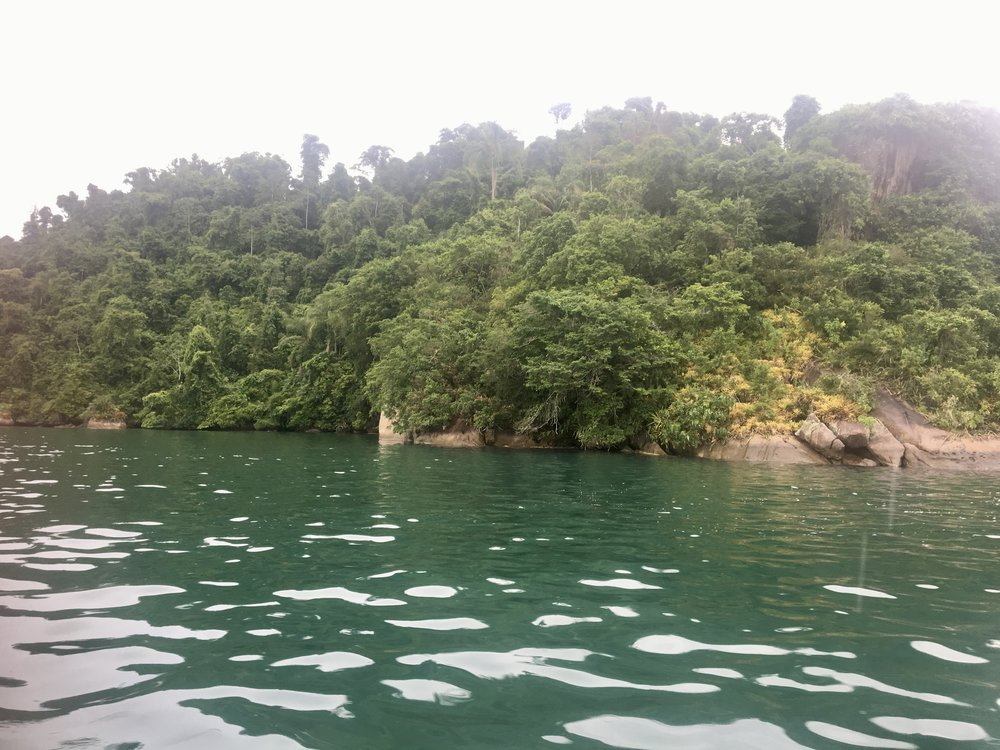 Island Snorkles (Paraty, Brazil)