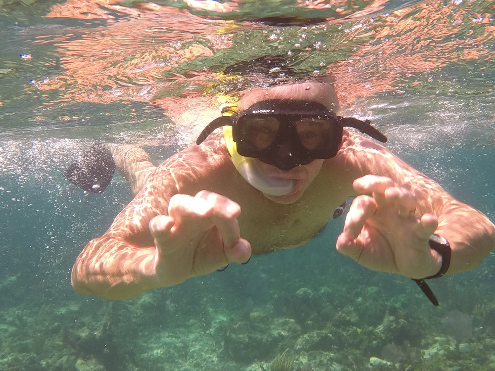 Under the Sea  (St Martin, Carribean Sea )
