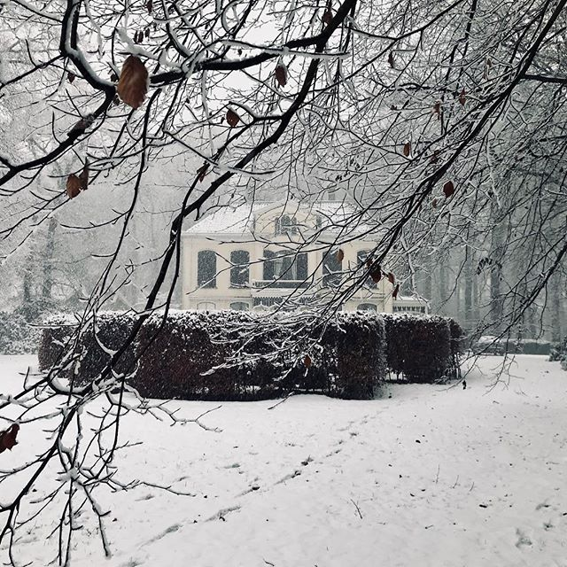 #winterwonderland2017 #sneeuw #snow #kerstsfeer #koud