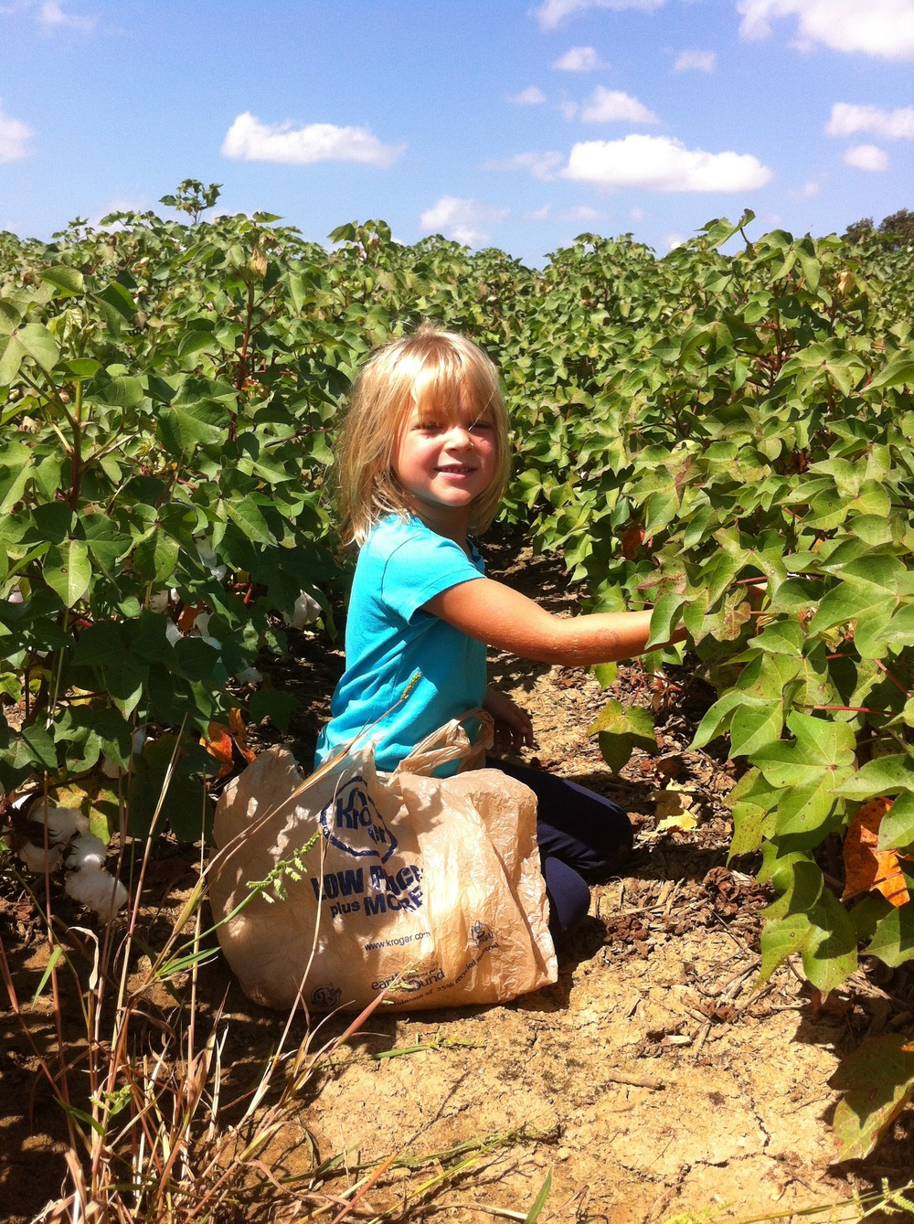 my daughter in a field of mature cotton