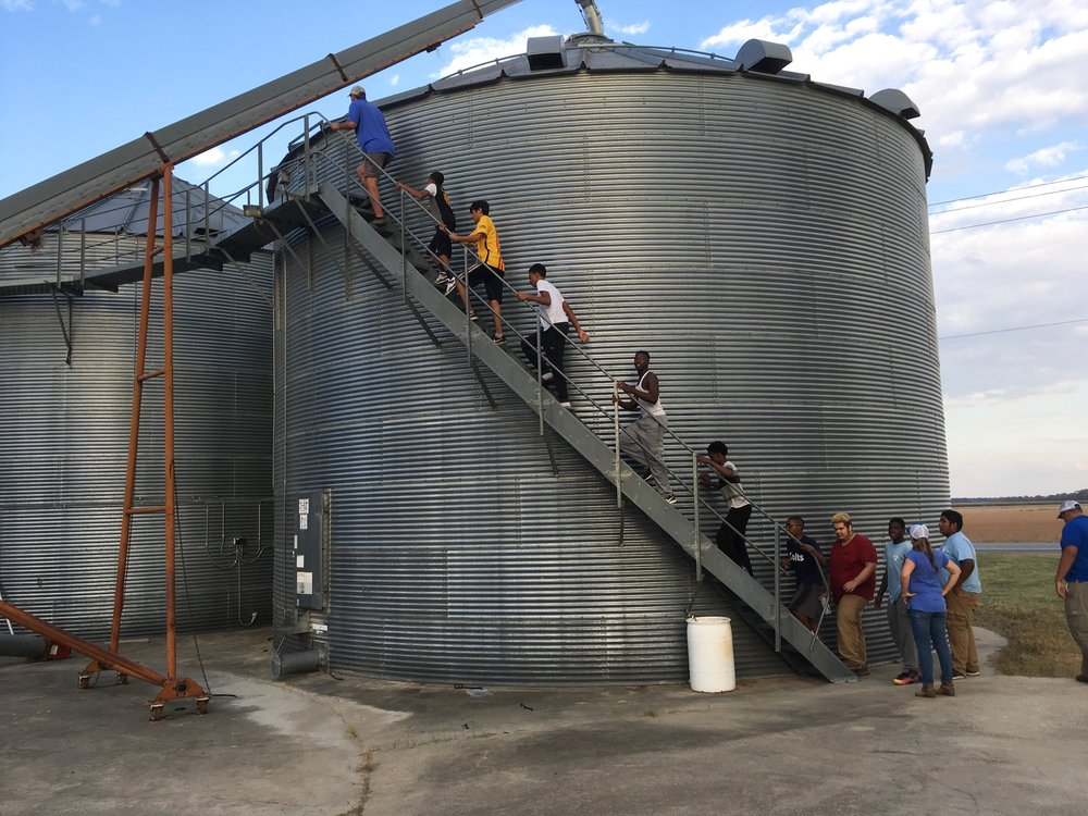 A group from the Mississippi Delta climb to the top of grain bins to see how grain is stored.