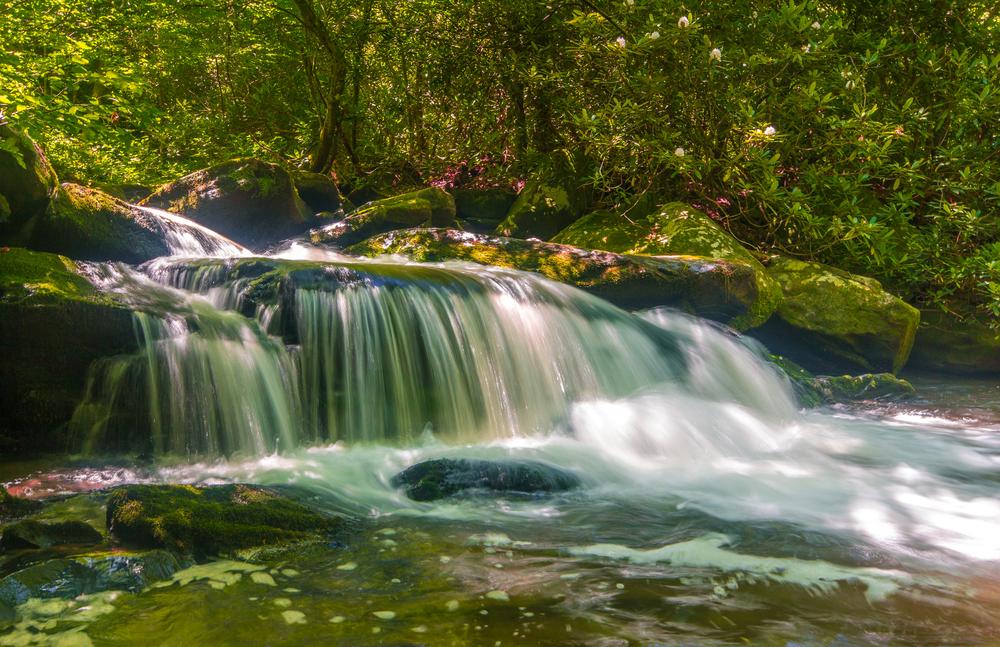 Beauty of Water.jpg
