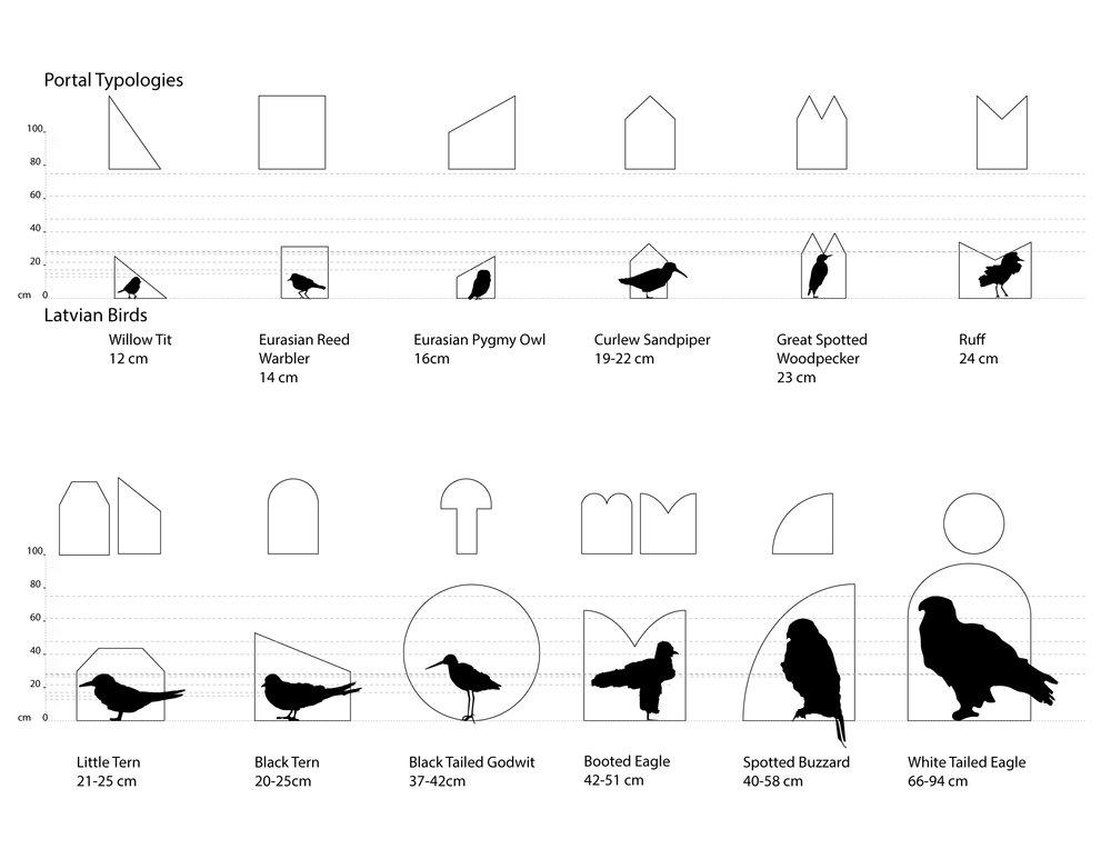 bird_diagram.jpg