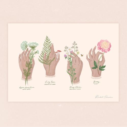 Rachel Corcocan print,  €23
