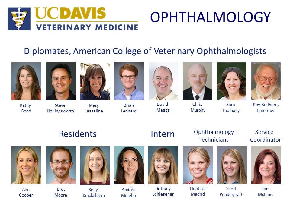 UC Davis Ophthalmology Staff 2018.jpg