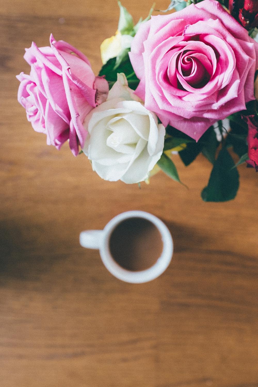 moomin home rose