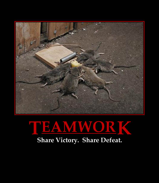 power of teams examples of great teamwork