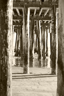 Beach 277