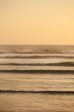 Beach 291