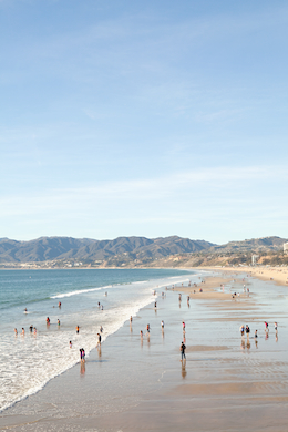 Beach 311