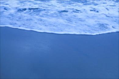 Beach 336