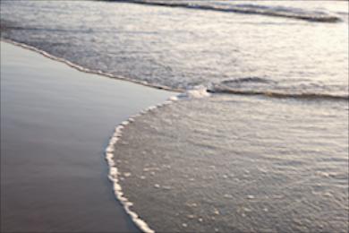 Beach 339
