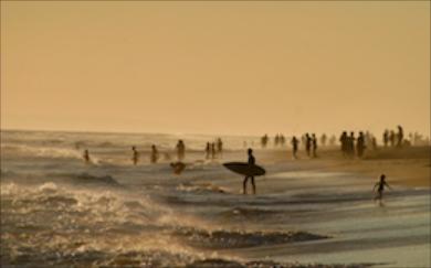 Beach 344