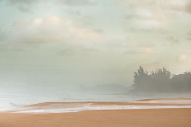 Beach 348