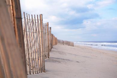 Beach 353