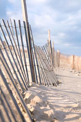 Beach 376