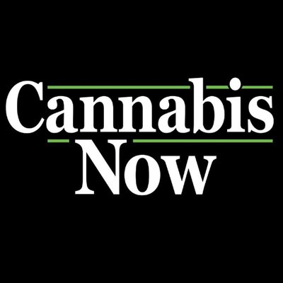 cannabis now.jpg