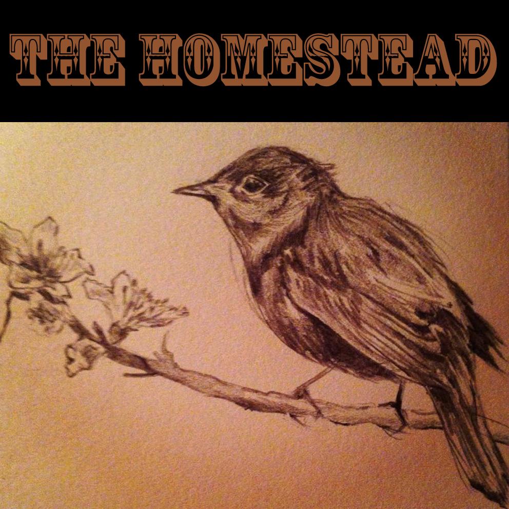 the homestead album cover