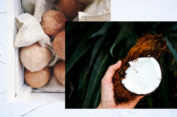 The Base - The magic starts with the coconut. Our ethically sourced and unsweetened coconut lays the foundation for our fantastical flavors to flourish. Packed with plant power and high in the good kinds of fats, coconuts lay our foundation.