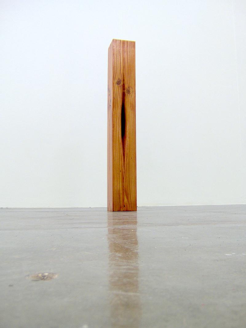 Void iv-  100cm x 20cm x 20cm - oak