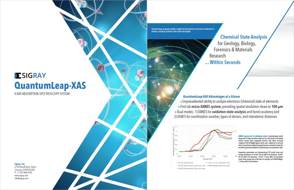 QuantumLeap Brochure.PNG