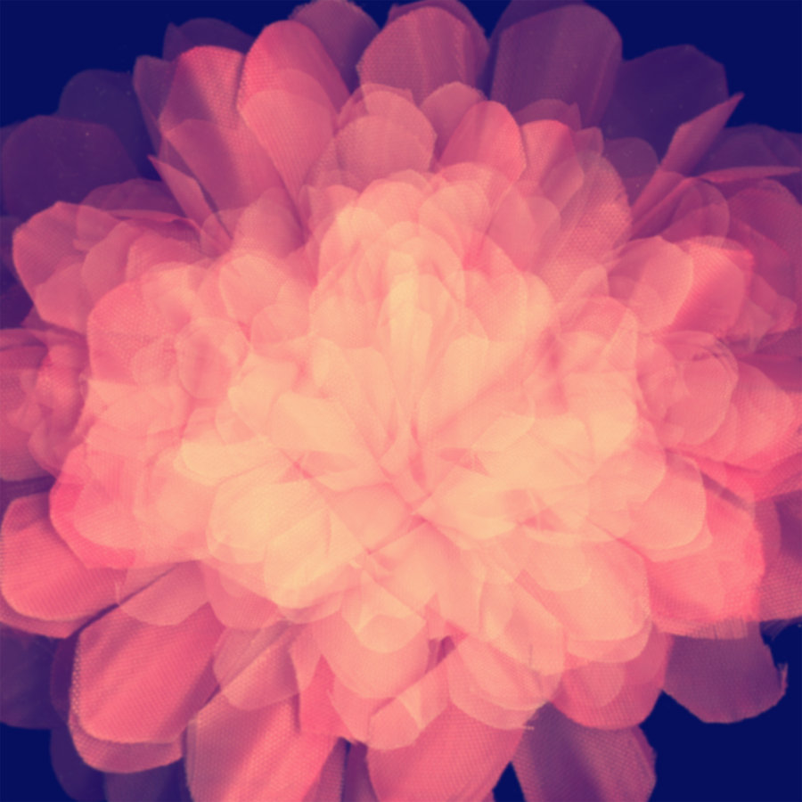 Texture_flower_by_palnk