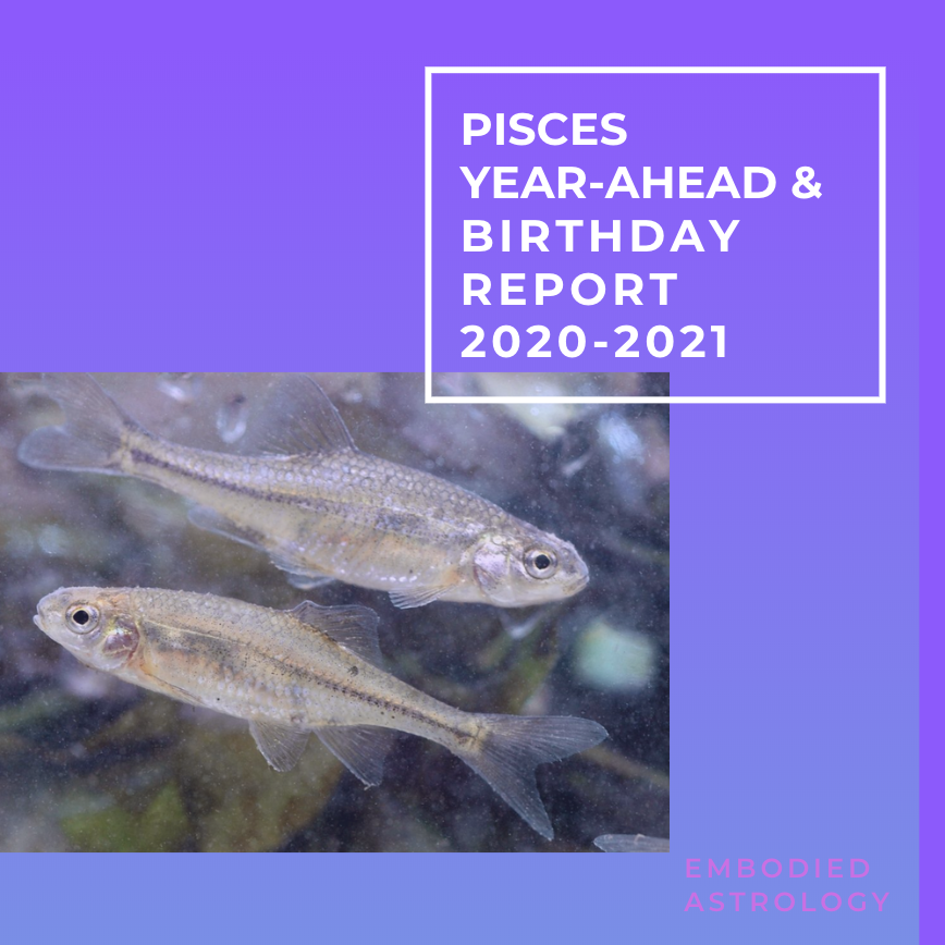 PISCES Year Ahead & Birthday Report for 2020/2021