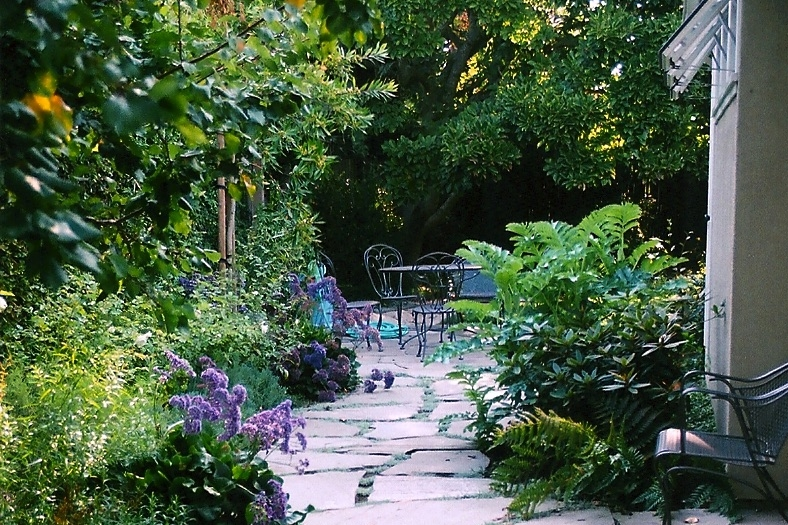 Medoff garden.jpg