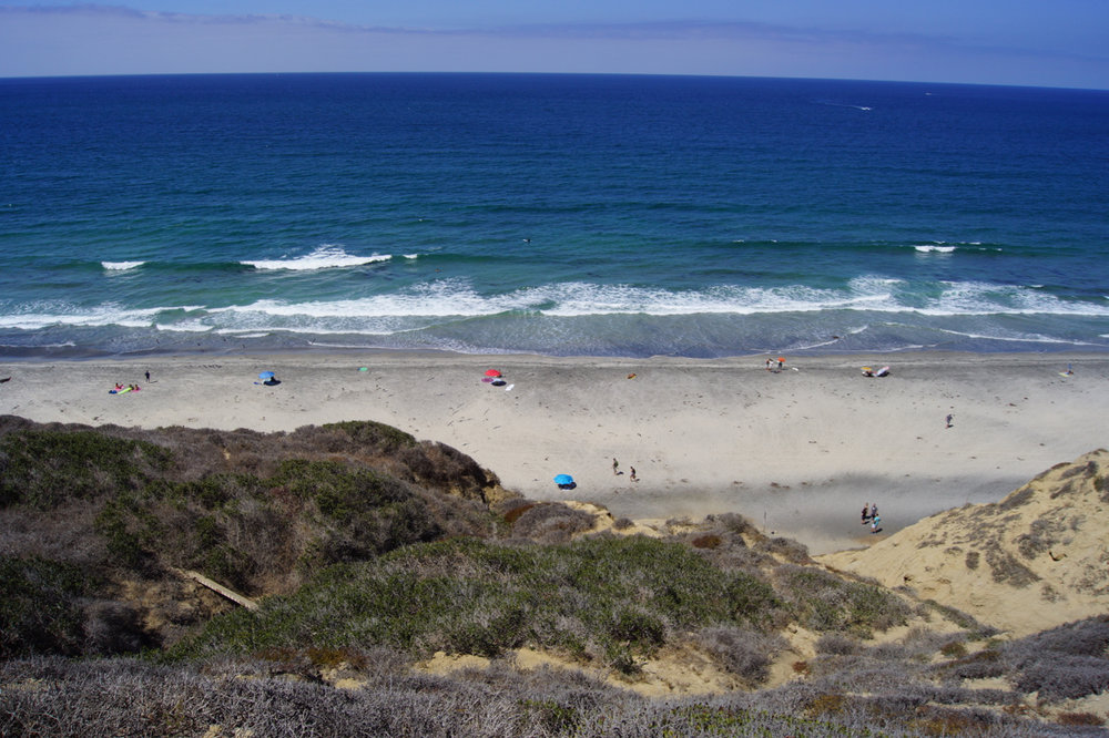 blacks beach hike