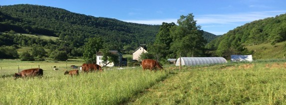 whole farm planning.jpg