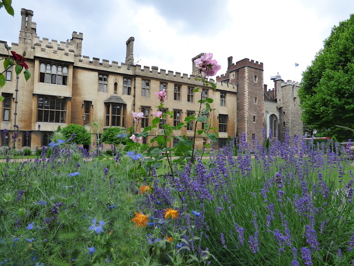 Lambeth Palace Garden Pic 2.jpg