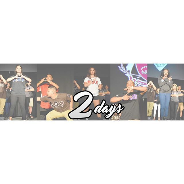TWO MORE DAYS until UF Multicultural Greek Council Showcase 2016! A show you don't want to miss out on!  #UFMGC #MGCShowcase2016 #UFSigSigRho #UFLambdas #UFKappas #UFBetas #UFTNX