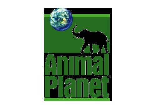 Animal-Planet-logo-old.png