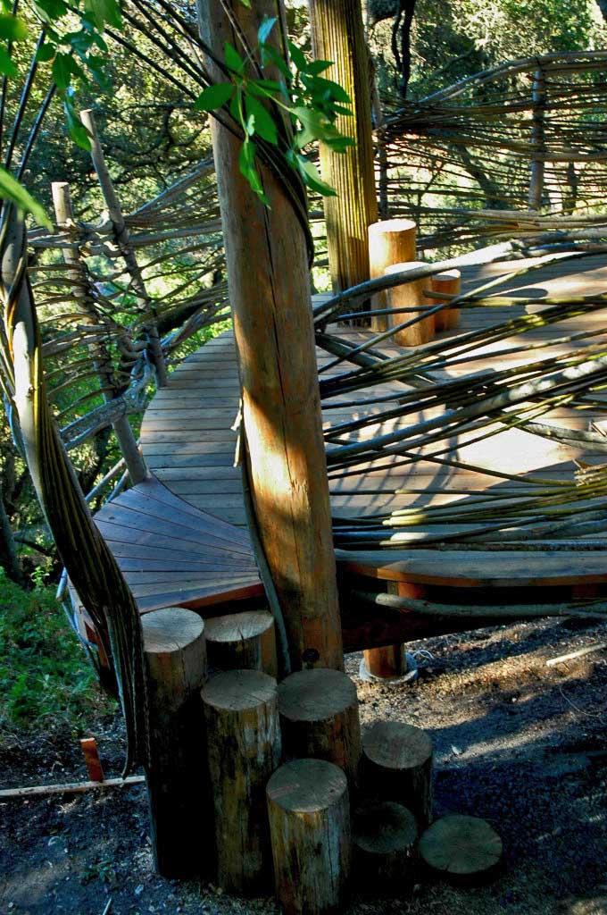 Mountain View Treehouse