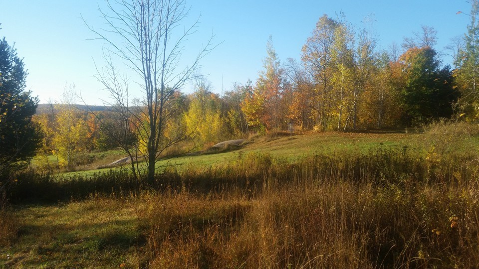 Fairway in Autumn.jpg