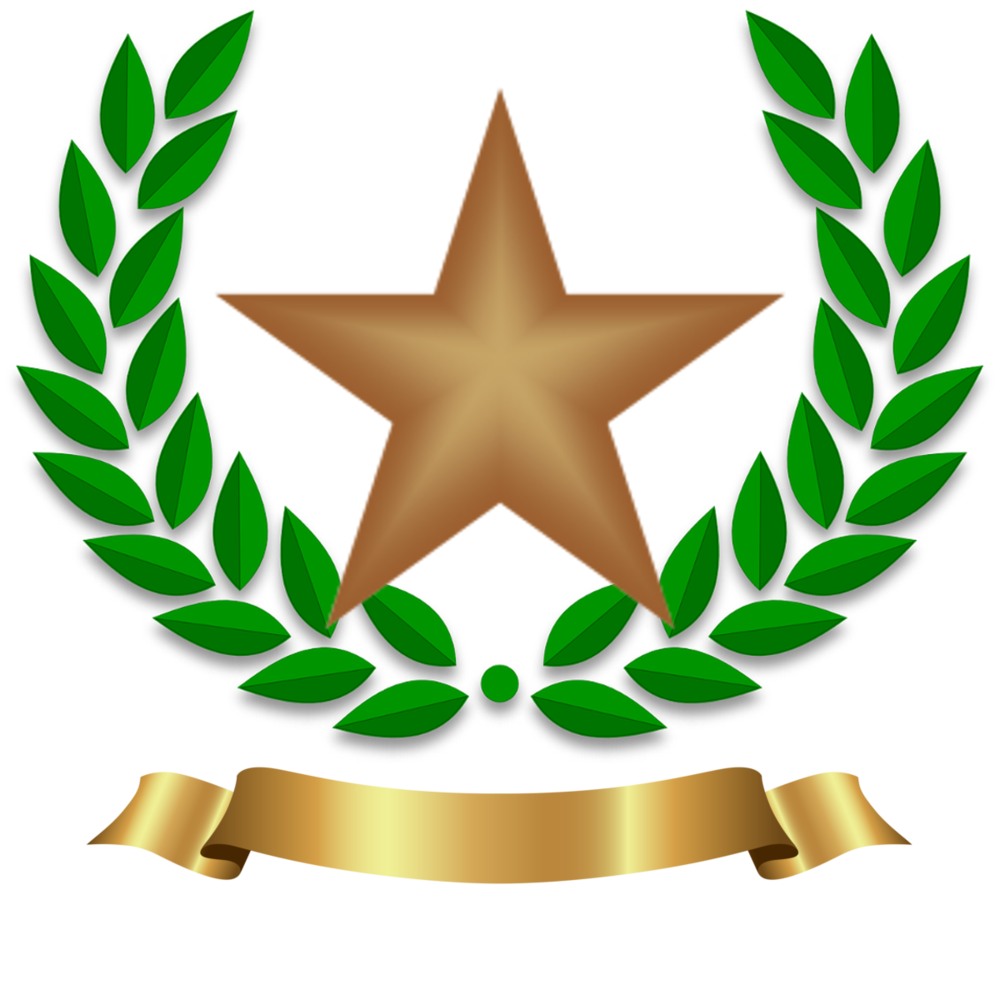 Bronze star.png