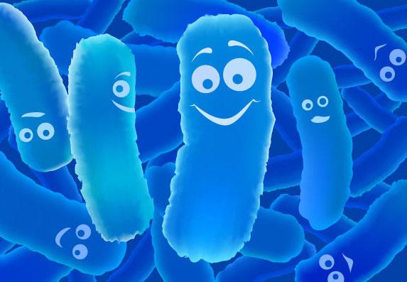 probioticsdrkyia.com.jpg
