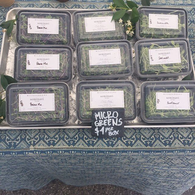 The beauty of microgreens is that they're a year round crop that is present even when everything else on the farm is in transition. Come pick some up today at the Highland park Farmers' Market from 3-8pm . . . . . . . . . . #farmersmarket #highlandpark #highlandparkfarmersmarket #foodbeyondfuel #farmlife #restaurant #microgreens #growing #veggies #farmtotable #foodasmedicine #foodie #greens #healthyfood #healthyeating #healthyfood