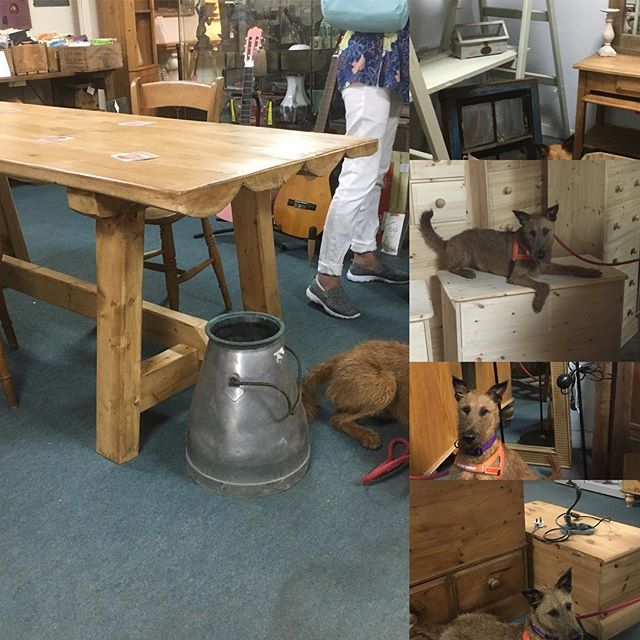 Check out this MDe in Gloucester Table and other new items in the store! #gloucester#vintage#upcycle #retro #fleamarket