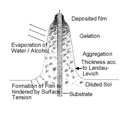 Fig. 2: Gelation process during dip coating process, obtained by evaporation of the solvent and subsequent destabilization of the sol (after Brinker et al [3])