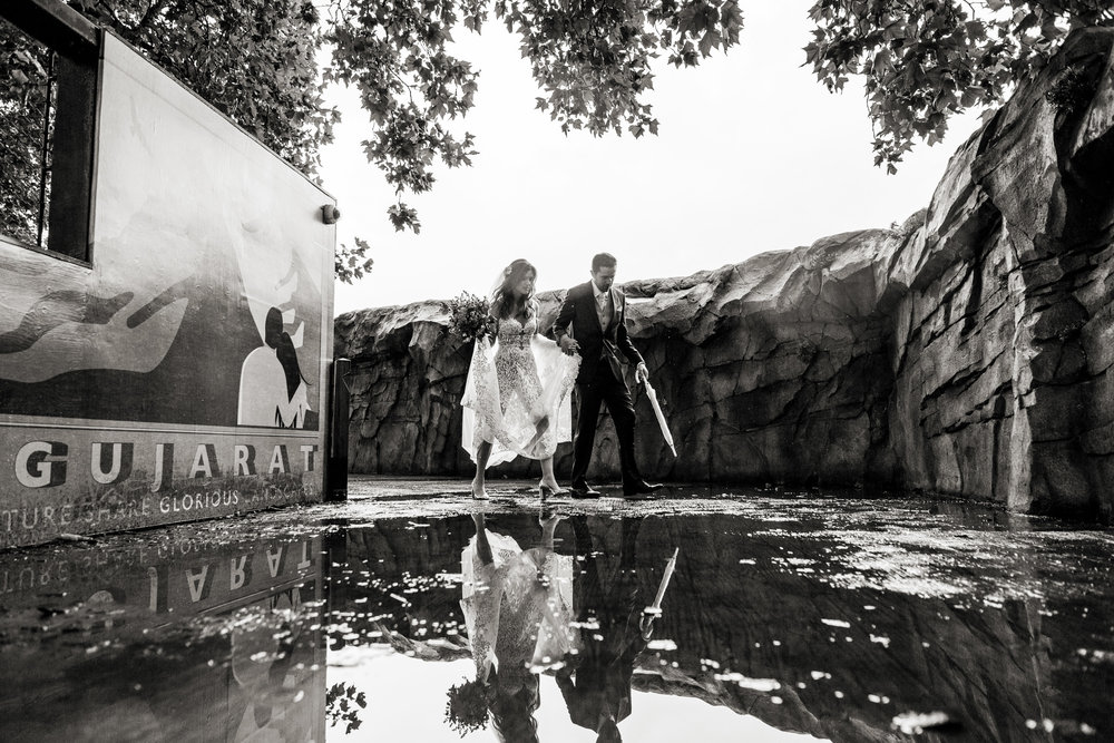 london zoo wedding