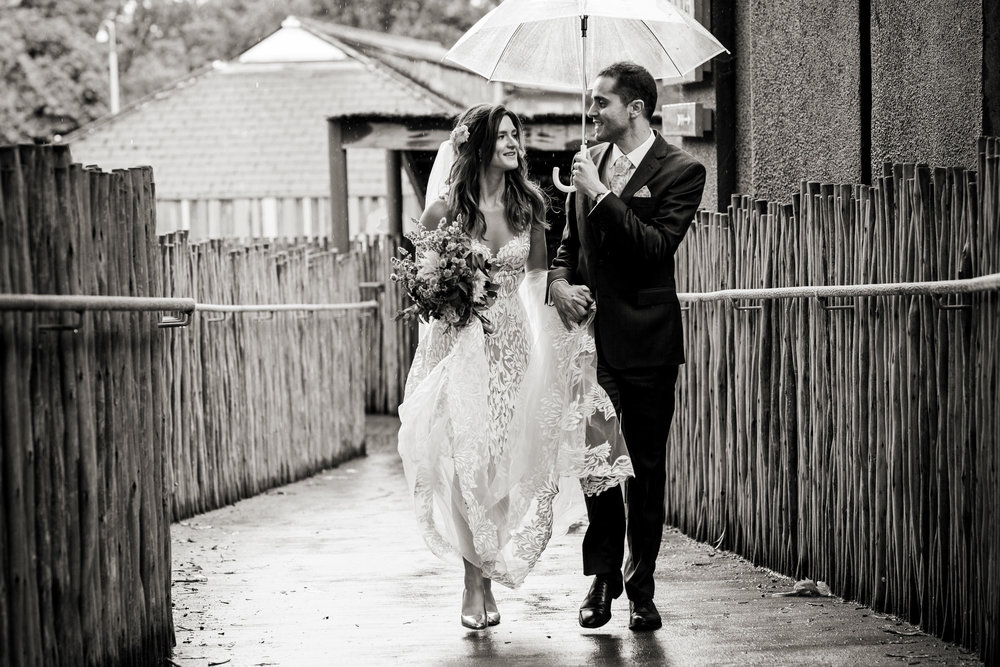 London Zoo Wedding Photography 028.jpg