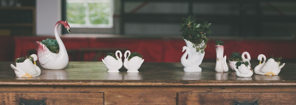 The swans  - nine vintage swan vessels, perfect for small flower arrangements, or with optional succulents  TO HIRE: £35 without succulents, £50 with succulents