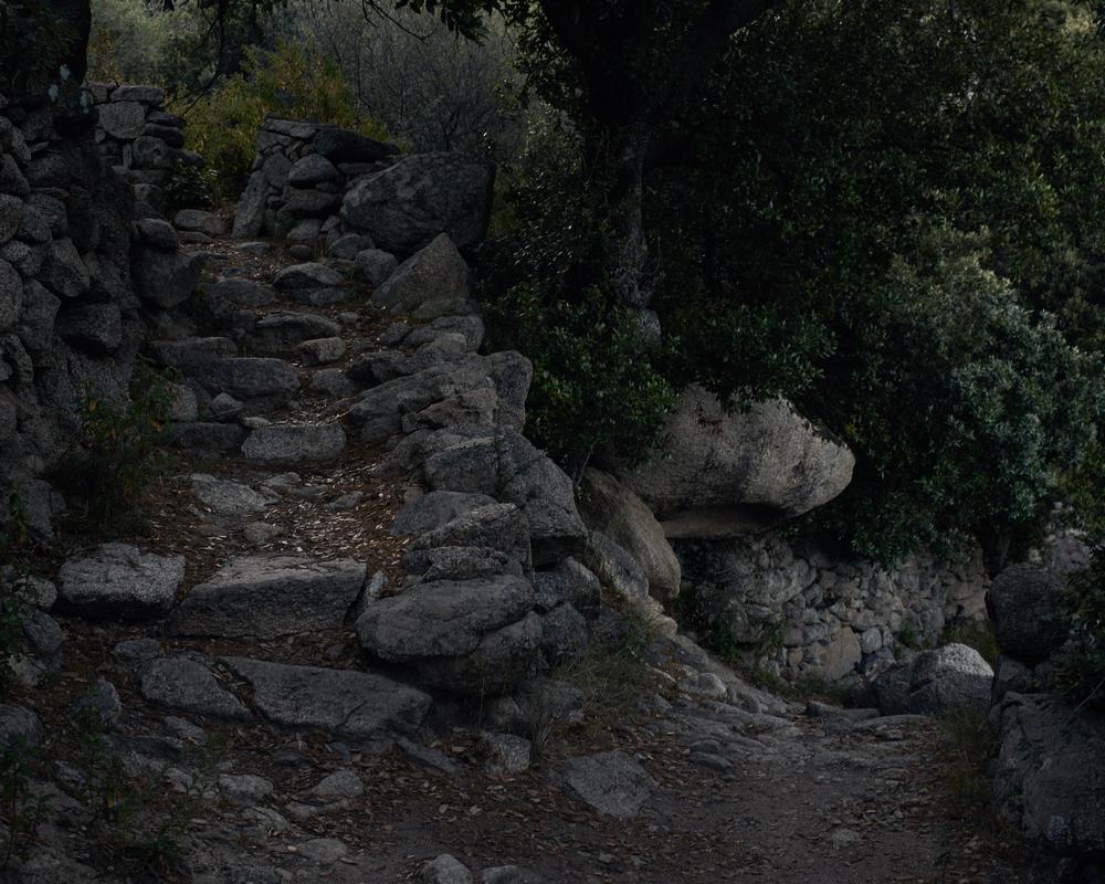 Paths 3.jpg