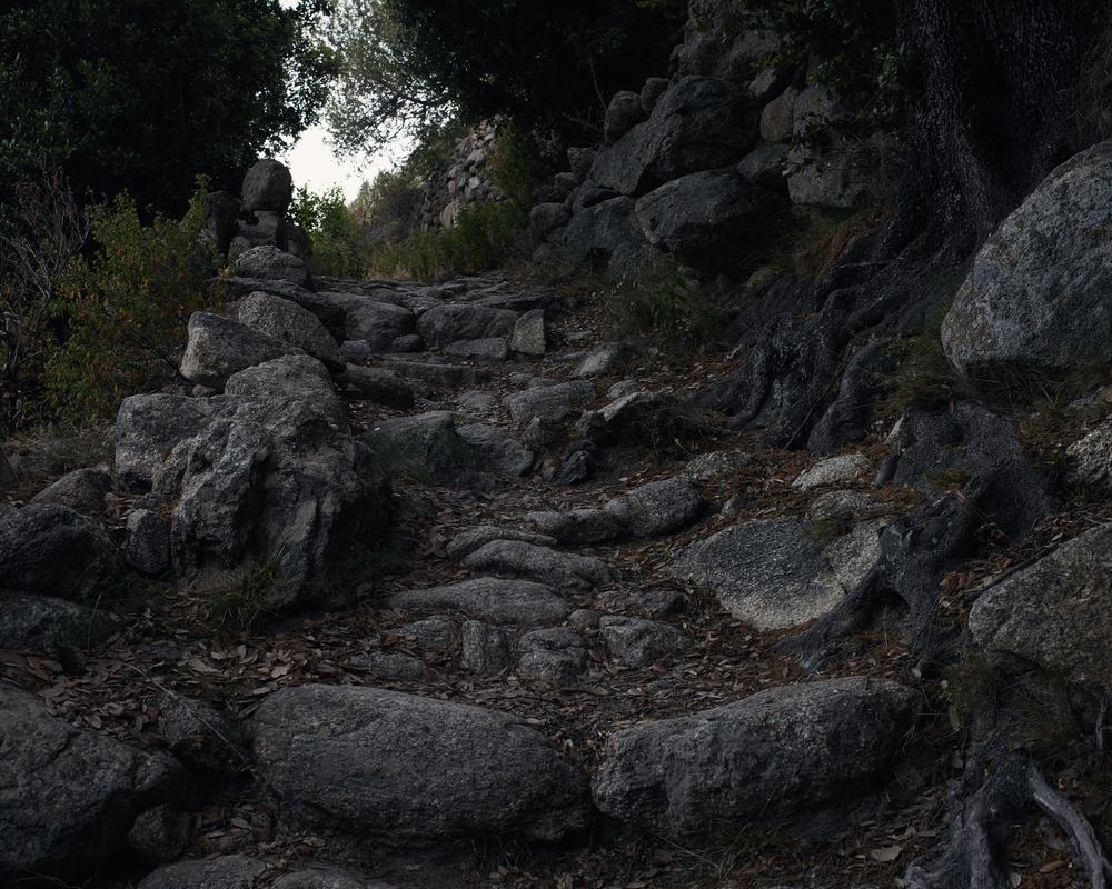 Paths 2.jpg